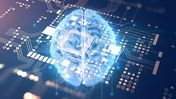 The nature of the error matters': Why considering AI's failures is